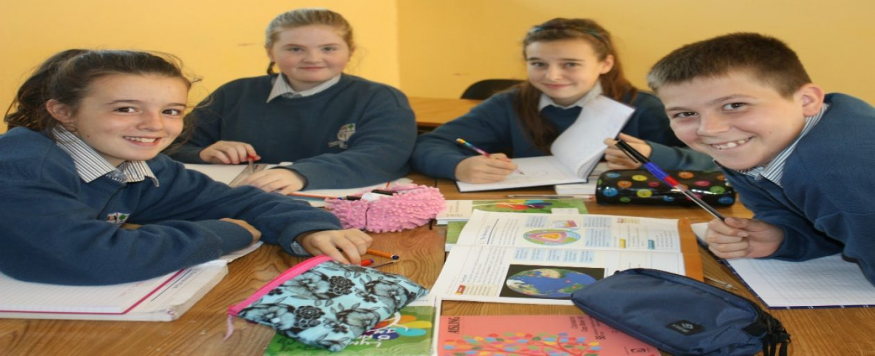 Mountmellick Community School